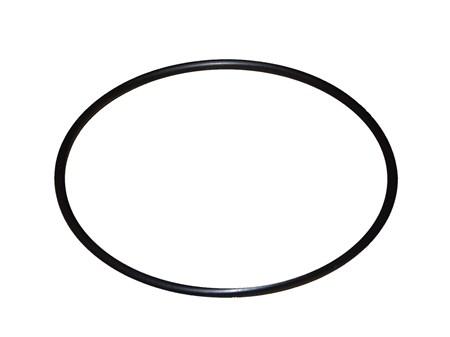 O-Ring Sjövattenfilter 123,42x3,53